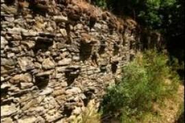 Miel de Corse – Mele di Corsica