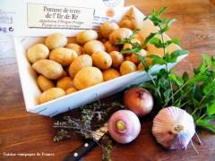 Pomme de terre de l'île de Ré